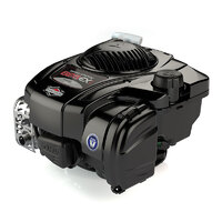 Бензиновий двигун Briggs & Stratton 625EX 093J020105H1YY0001
